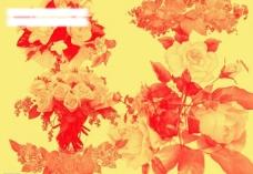 玫瑰花笔刷图片