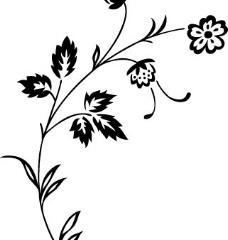 韩国典雅花纹图片
