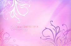 粉色婚纱蒙板图片