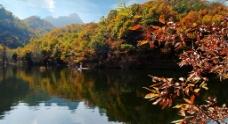 金秋山水图片