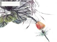 水墨画 昆虫 蝗虫 蚂蚱 蛐蛐 知了 中华艺术绘画