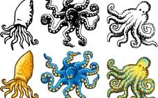 章鱼矢量素材图片