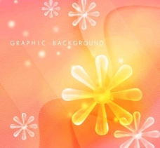 梦幻晶莹透明10 透明花形图片