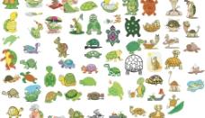 可爱的乌龟图片