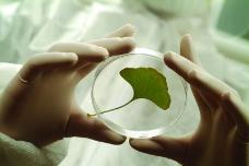植物生化科技0046