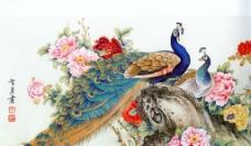 牡丹孔雀图图片