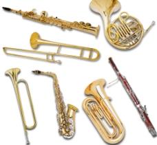 西洋乐器集合图片
