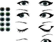 眼睛 眼球图片