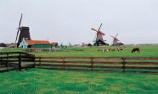 比利时风情图片