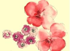 韩国花纹图片