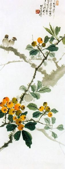 枇杷双鸟 图图片