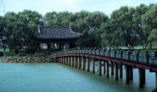 碧水上的小桥图片