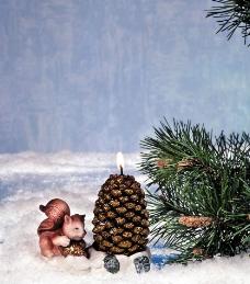 圣诞节日装饰品图片