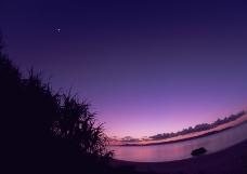 海洋风情0088