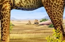 大自然景观0087