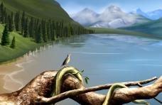 大自然景观0034
