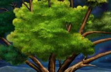大自然景观0062