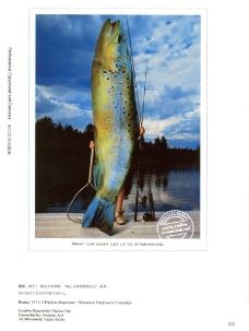 2007欧洲最佳创意奖0215