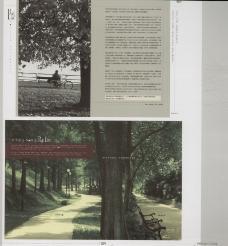 中国房地产广告年鉴20070321