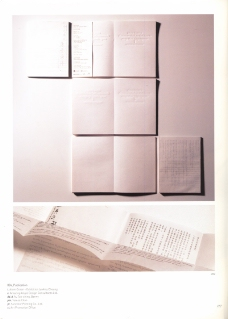 香港亚太设计双年展0044