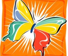 矢量蝴蝶墨西哥图片