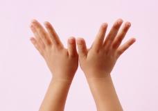 手掌手势0188