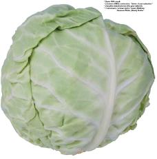 蔬果特写0034