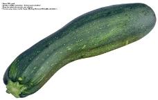 蔬果特写0024