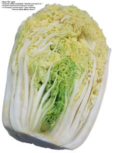蔬果特写0038