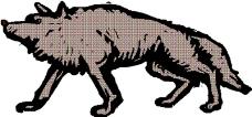 动物漫画4480