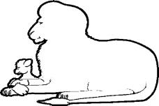 动物漫画8189