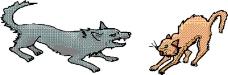 动物漫画4483