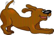 动物漫画7067