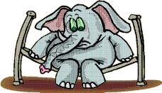 动物漫画6366