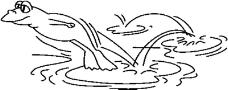 动物漫画7748