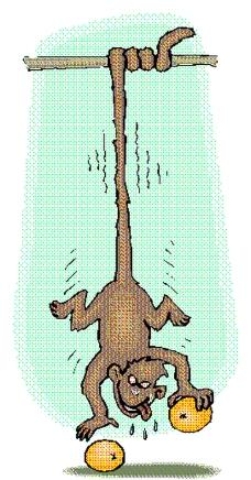 动物漫画8355