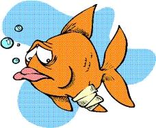 动物漫画6390