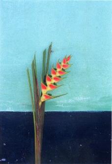 花朵创意0018