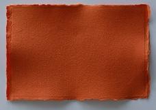 纸纹特征0041