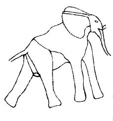 动物0009