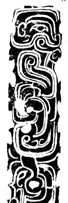 虫鱼0128