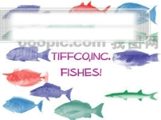 海鱼类笔刷