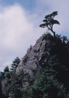 山河湖海0076