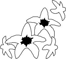 花草2001