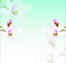 淡粉花 移门图片