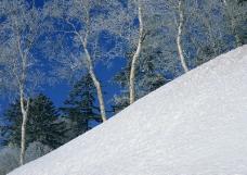 冬天雪景0124