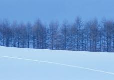 冬天雪景0237