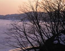 冬天雪景0155