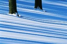 冬天雪景0081