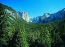 峡谷密林图片